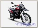 Мотоцикл OMAKS YD250GY