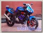 Мотоцикл Suzuki GX-R 250 replika Lite