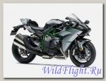 Мотоцикл Kawasaki Ninja H2 Carbon 2019