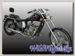 Мотоцикл Regal Raptor DD 300E-6