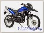 Мотоцикл Bison GS250