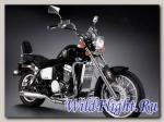 Мотоцикл Regal Raptor DD 350E-9B ARIZONA