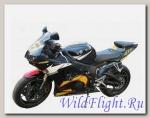 Слайдеры Crazy Iron для Yamaha YZF-R6 2003-2005 г.