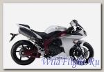 Слайдеры Crazy Iron для Yamaha YZF-R1 2009 - 2014 г.