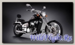 Мотоцикл Regal Raptor DD350E-2 SPYDER