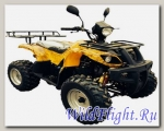 Квадроцикл Bison ATV 200 MX 10