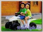 Детский электроквадроцикл Baltmotors Mini E-Power
