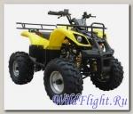 Квадроцикл IRBIS ATV110U