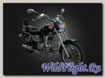 Мотоцикл Desert Raven ARIZONA 250