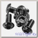 Болт набор крепления тормозного ротора (12 шт) Серебристые M5x10