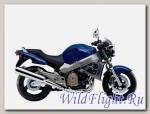 Слайдеры Crazy Iron для Honda X11