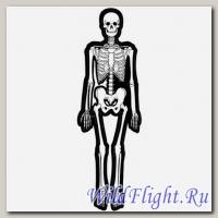 Наклейка (10х30) Skeleton
