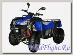 Квадроцикл ADLY 320 U 2WD (с цепным приводом)