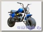 Мотоцикл UM 200, мотоцикл (Куница)