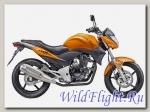 Мотоцикл Stels FLEX 250