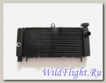 Радиатор для Honda CB600F (Honda Hornet) 19010-MBZ-D31