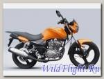 Мотоцикл Zontes Panther ZT125-8A оранжевый