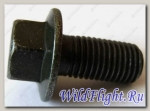 Болт с фланцем М10х1.25х 20мм , сталь LU018505