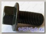 Болт с фланцем M10х1.25х20мм , сталь LU018505