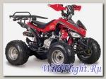 Квадроцикл Scorpion 110cc